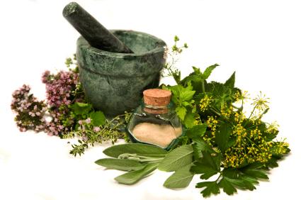 lupusa-hangi-bitkiler-iyi-gelir